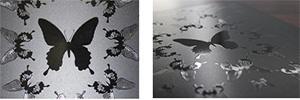 Expresó la calidad superlativa con solo el uso de tinta clara: Butterfly