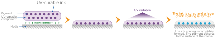 Mechanism of UV- curable ink adhesion