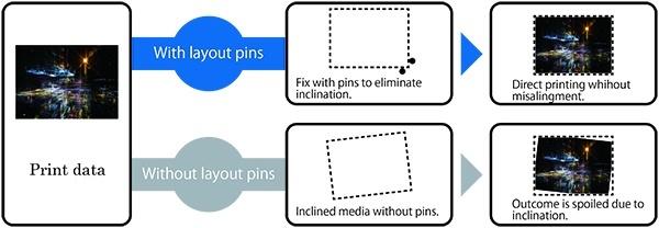 Layout pins