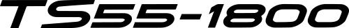 TS55-1800