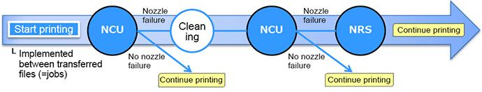 NCU&NRS