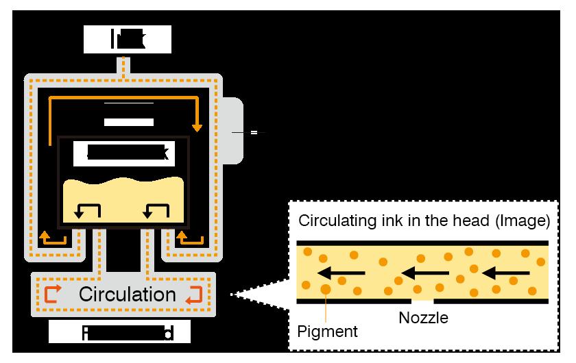 Ink circulation print head